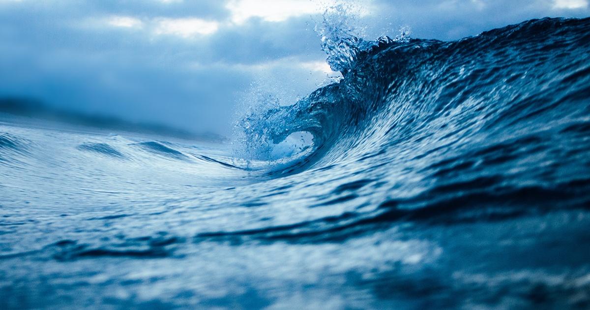 Photo of an ocean wave
