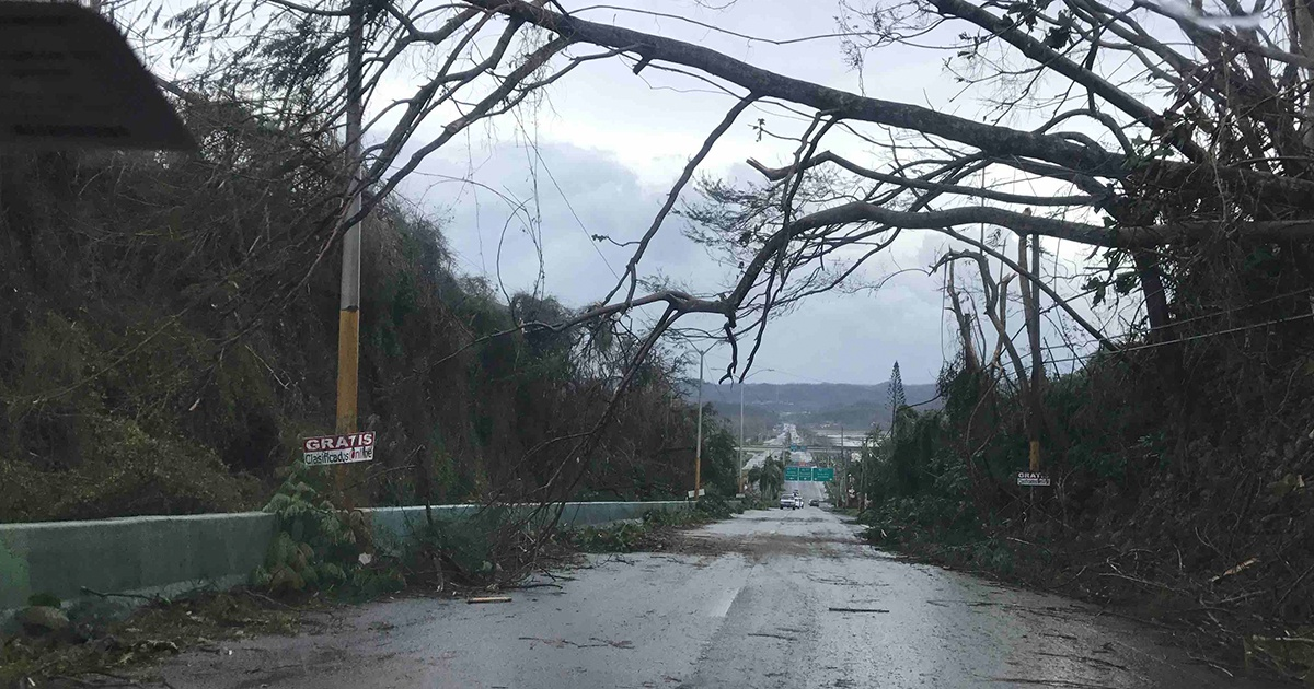 Hurricane Maria Aftermath